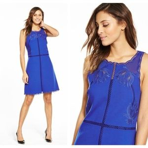 Ted Baker Codi Embroidered Scallop A-Line Dress